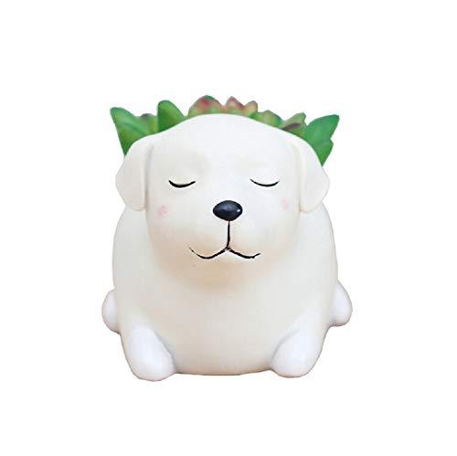 Youfui Cute Dog Flowerpot Resin Succulent Planter Desk Mini Ornament...