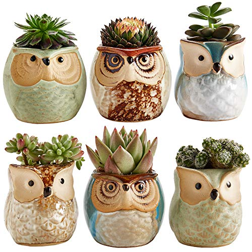 Sun-E 2.5 Inch Owl Pot Ceramic Flowing Glaze Base Serial Set Succulent...