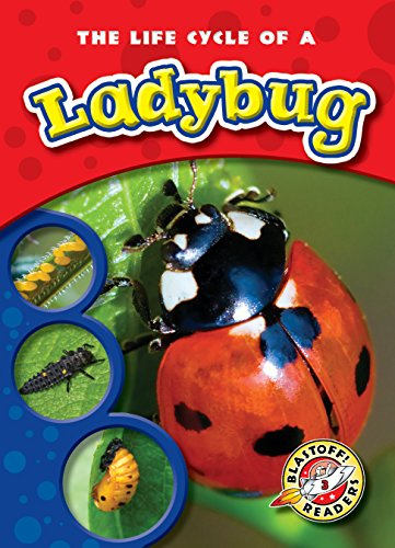 Bellwether Media - Blastoff Readers Level 3 - Insect Books for Kids - Life...