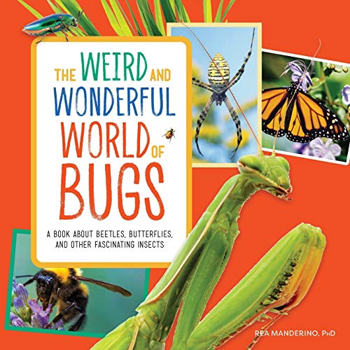 The Weird and Wonderful World of Bugs: A Book About Beetles, Butterflies,...
