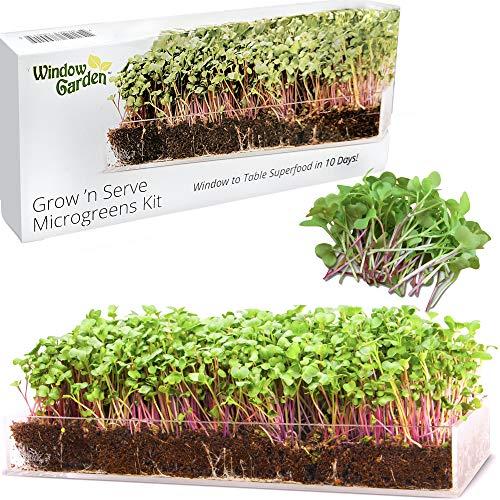 Window Garden – Microgreens Kit, Seeds to Fresh Greens. Complete...