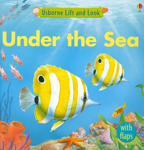 Under the Sea (Usborne Lift and Look Board Books)