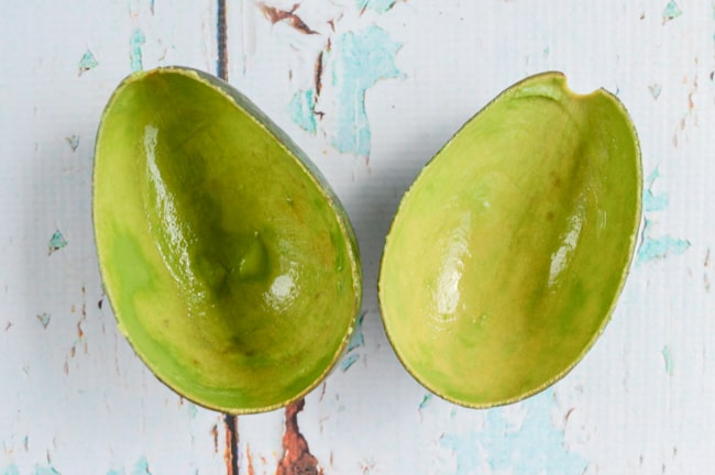 avocado shells