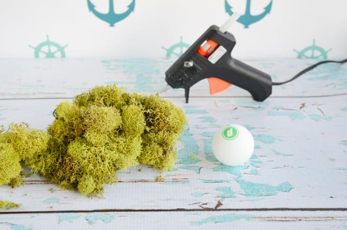 how to make a moss ball