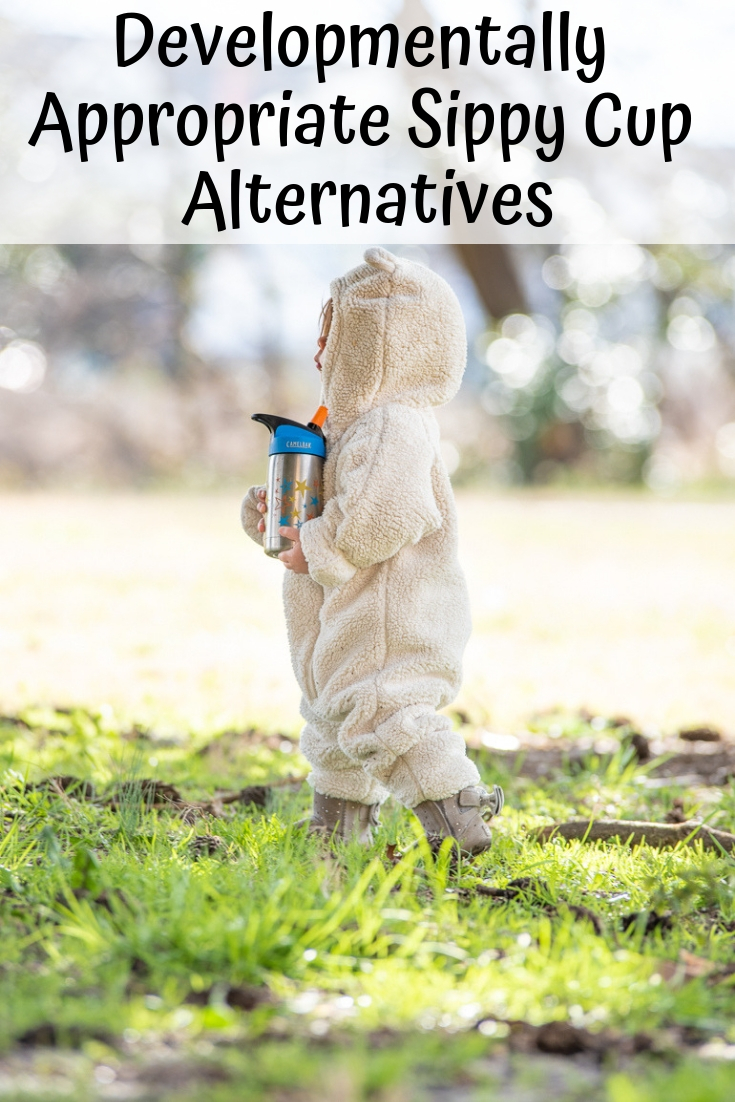 Are sippy cups safe? The best developmentally appropriate sippy cup alternatives.