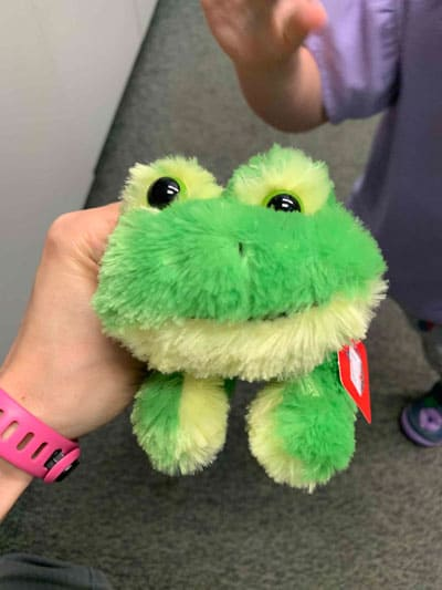 Aurora stuffed frog for toddlers