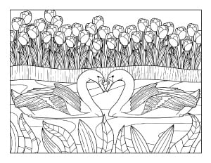 spring coloring page with swans and flowers