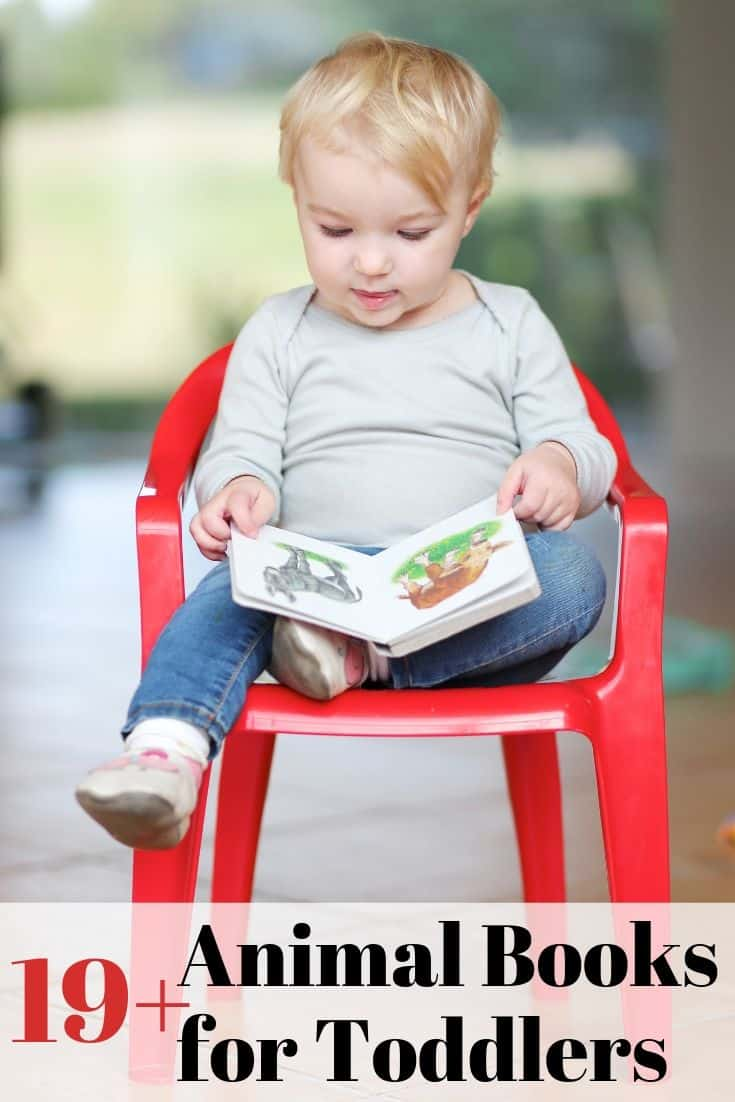 19+ animal books for toddlers