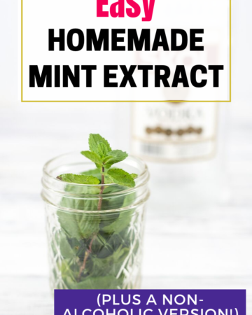 easy homemade mint extract