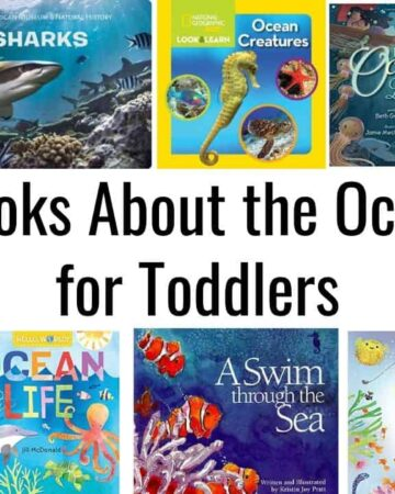 "image collage of toddler board books about the ocean with text ""books about the ocean for toddlers"""