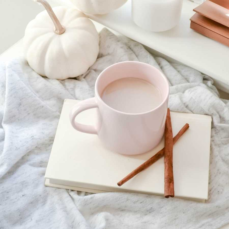 a shot of a cozy journaling scene with two white pumpkins, and a pink mug with hot chocolate resting on a white notebook