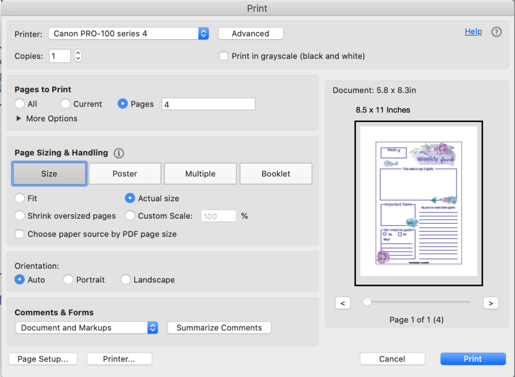 a print dialogue box in Acrobat Reader showing printing at actual size for an A5 sized printable on US letter paper
