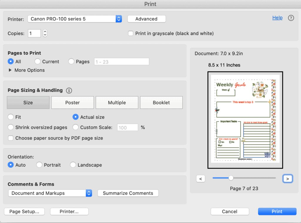 A print dialogue box screenshot from Acrobat reader showing printing a weekly goals planner page for December at actual size
