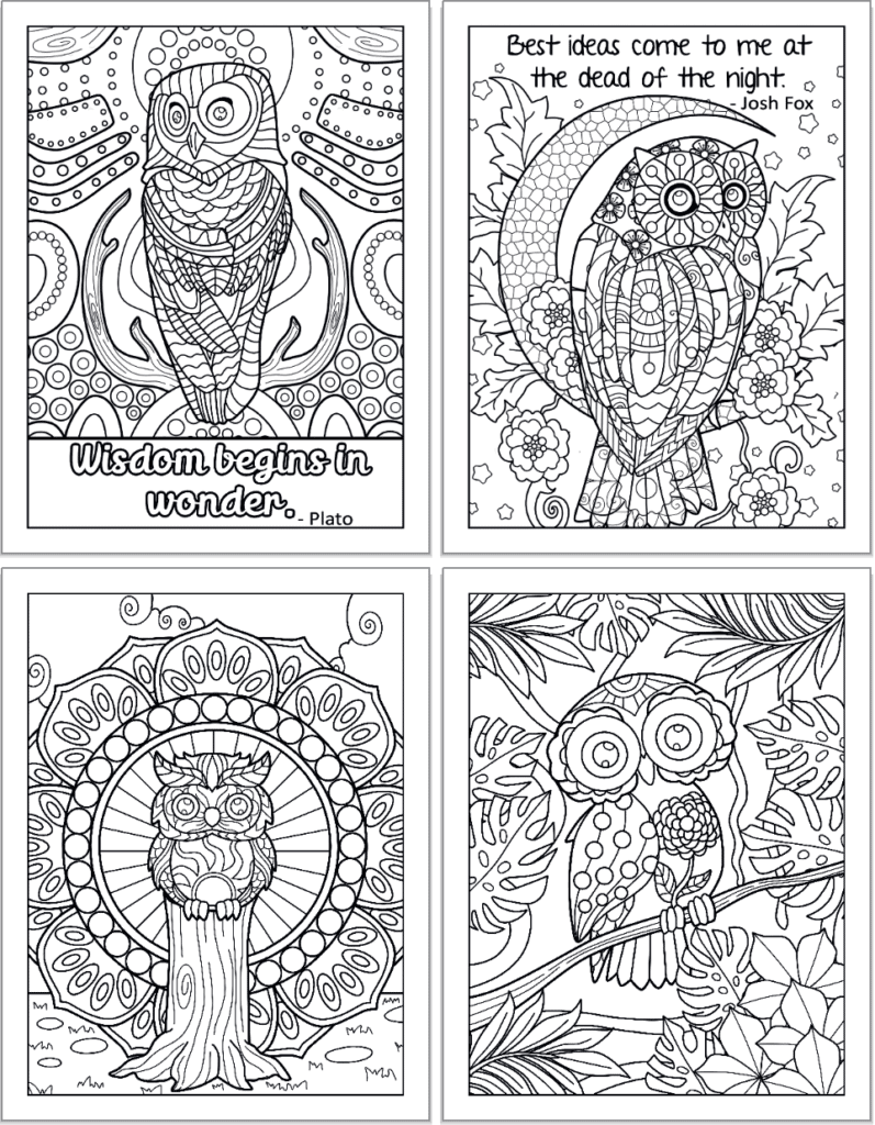 """A 2x2 grid preview of owl coloring pages. The top two pages have quotations"""" Wisdom begins in wonder - Plato"""" and """"Best ideas come tome at the dead of the nigh - Josh Fox."""" The bottom two pages feature an owl on a stump and an owl on a branch with tropical foliage."""