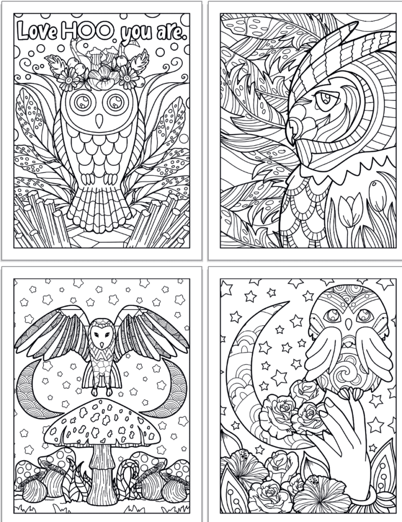 """A preview of four printable owl coloring pages. The pages show: An owl with a flower crown and words """"Love Hoo you are"""" in bubble letters to color, a close up side profile of an owl with feathers in the background, an owl with wings spread above a mushroom and two crescent moons, an owl perfected in a hand with a moon and flowers in the background."""