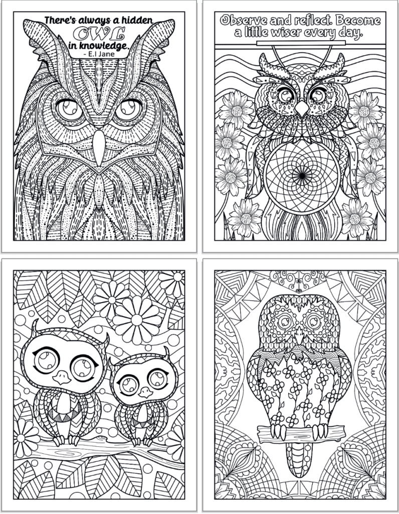 Four adult owl coloring pages in a 2x2 grid. The top two pages have quotes and the bottom two have owls sitting on branches.