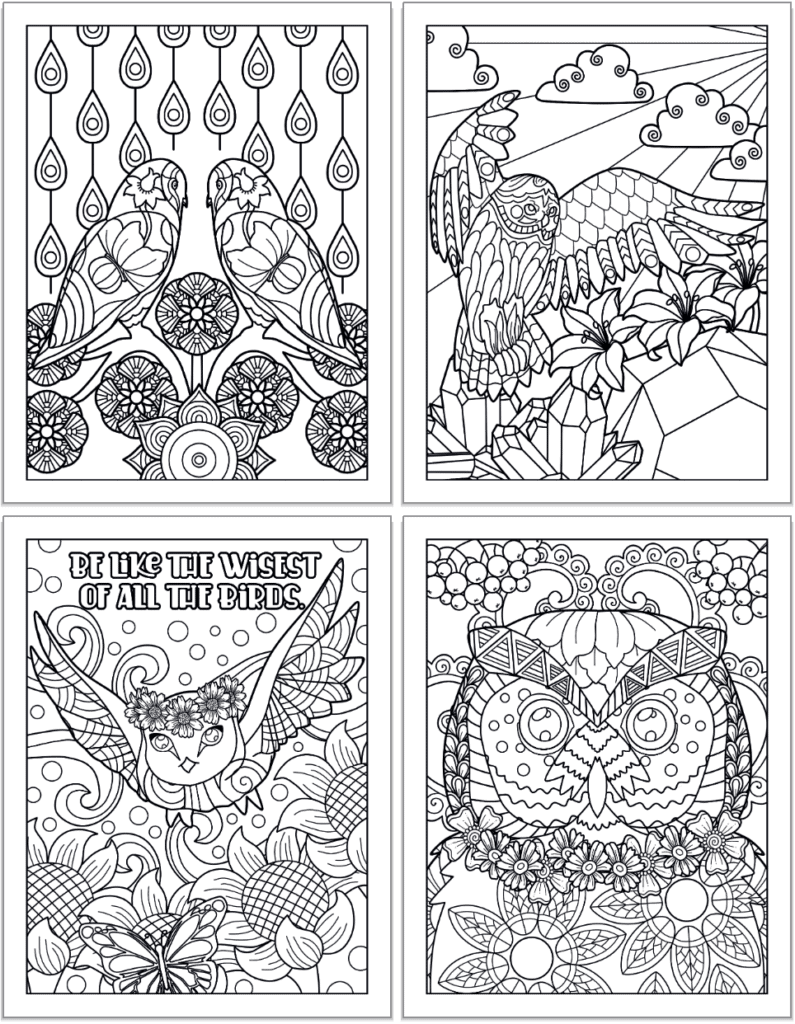 """A 2x2 grid of printable own coloring pages for adults. The pages feature: Two owls looking at each other, an owl in flight with flowers, crystals, and a mountain in the background, an owl with a flower crown flying with the quotation """"Be like the wisest and purest of all birds"""" and a close up of an owl's face with berries and flowers."""