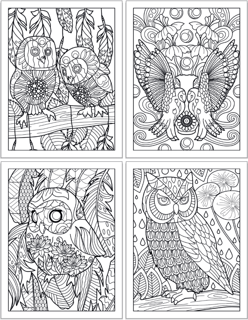 A 2x2 grid preview of printable own coloring pages. The pages show: Two small owls on a branch; two owls face each other with wings raised, a sloe up of a small, cute owl with a round body, and a larger owl on a branch with raindrops and flowers in the background.