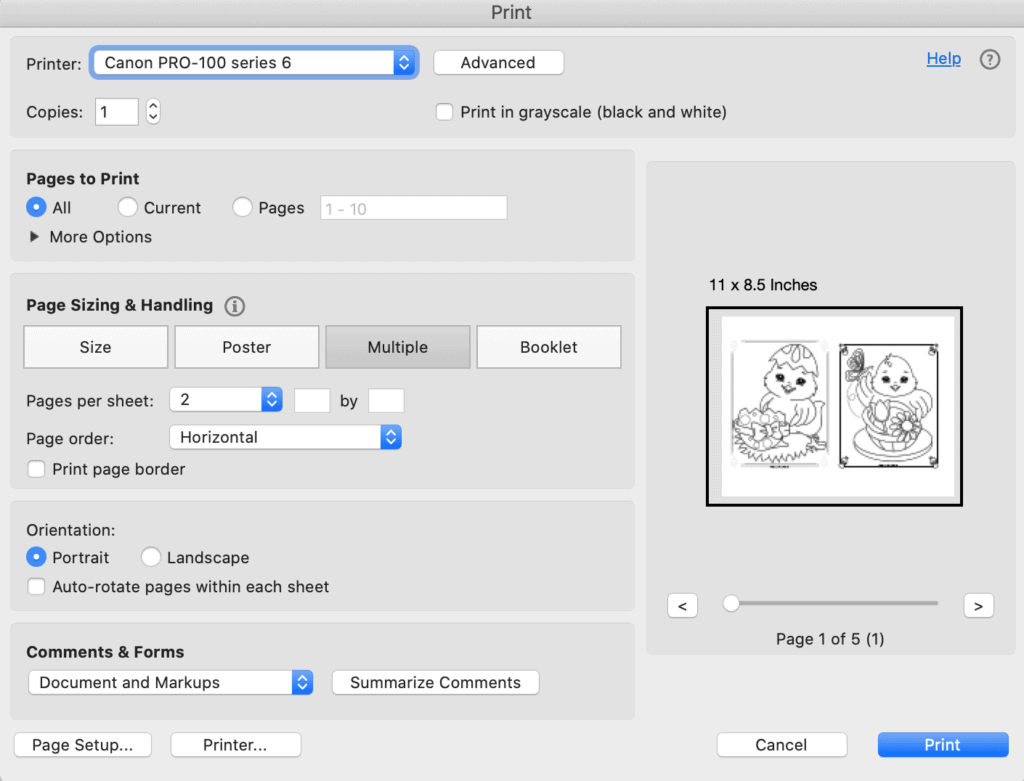 A print dialogue box from Acrobat Reader showing printing two Easter chick coloring pages two to a page