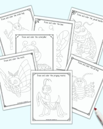 Seven printable insect trace and color pages. Each page as a cute cartoon insect to trace with dotted lines instead of solid lines. The insect is inside a doodle frame to color. Insects include: praying mantis, moth, pill bug, caterpillar, stink bug, butterfly, and jewel beetle