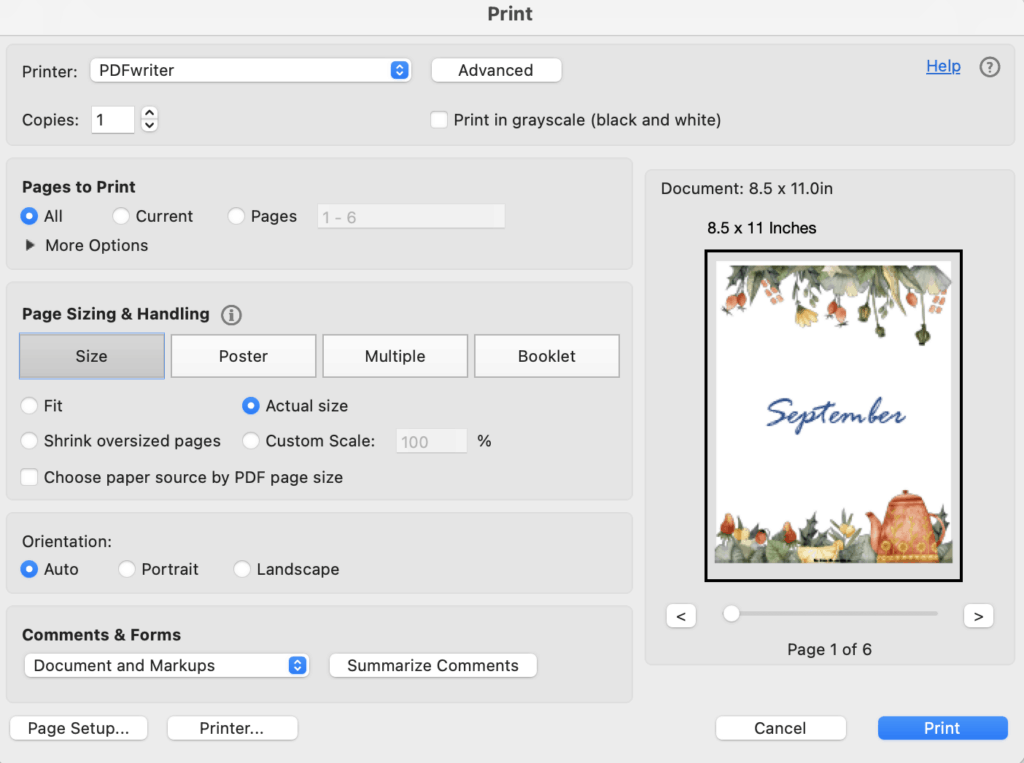 A print dialogue box from Acrobat Reader showing printing a page at actual size